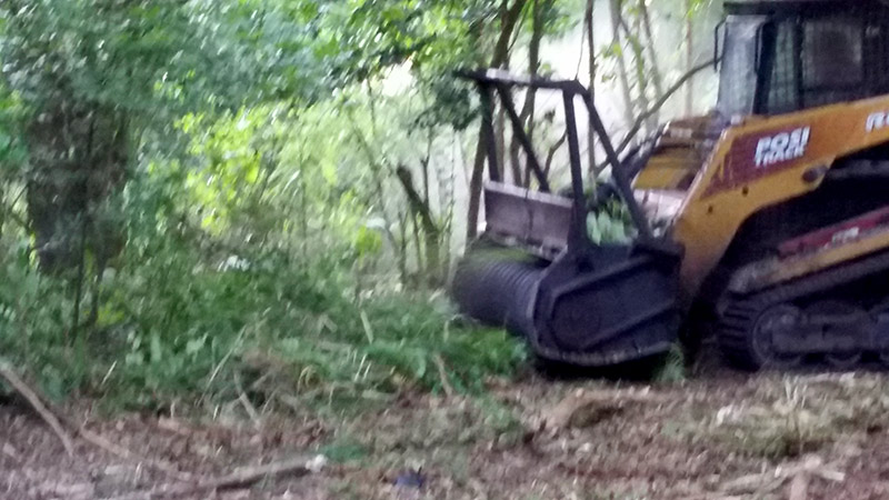 land clearing bush hogging